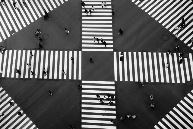 O-DAN(オーダン) 横断歩道