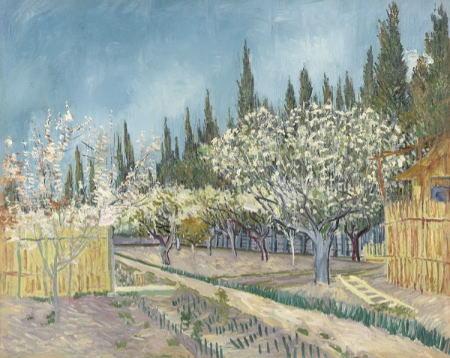 糸杉に囲まれた果樹園
